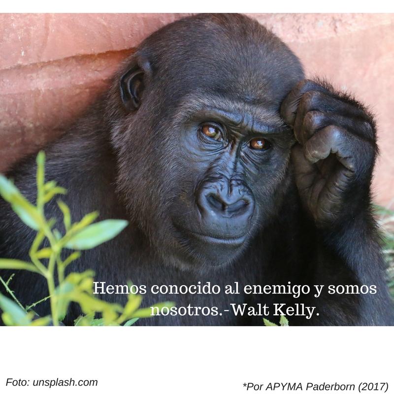 hemos-conocido-al-enemigo-y-somos-nosotros-walt-kelly